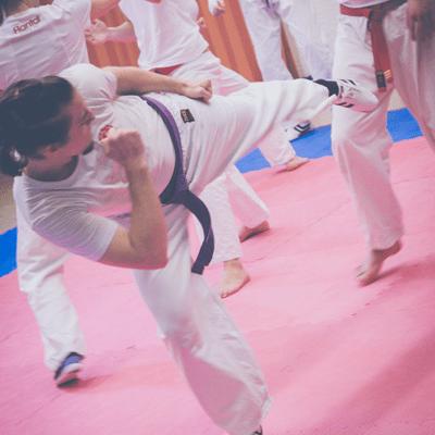 Kampfkunst kick